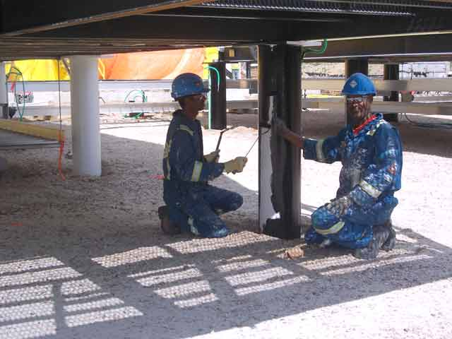 Field painting services Paragon FusionClad RoundHill project